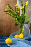 Still life bouquet tulips lemons Royalty Free Stock Image