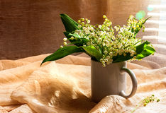 Still Life bouquet white lily valley Royalty Free Stock Image