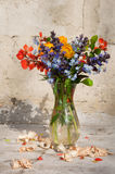 Still life bouquet Stock Image