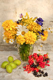 Still life bouquet Stock Photos