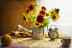 Still life with bouquet yellow rudbeckia watering can clock Stock Photography