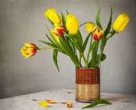 Still life bouquet yellow tulips Royalty Free Stock Photos