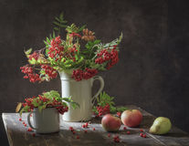 Still life with branches with berries red rowan in white vintage jug Royalty Free Stock Photography