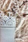 Still life. Branches of a flowering apricot in a white openwork vase on a white marble background Stock Photography