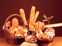 Still life with bread, rolls and baguette. Shot was taken for a bakery (scan from a 4x5 slide royalty free stock photo