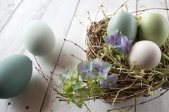Still life with easter eggs Stock Photos