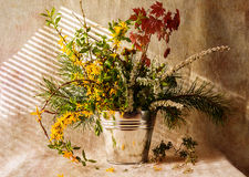 Still life bunch gifts forest Royalty Free Stock Photo