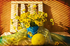 Still life bunch small yellow florets melon Royalty Free Stock Images