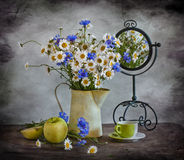 Still life with camomiles and corn-flowers Stock Photo