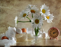 Still life with camomiles and eggs Stock Image