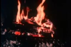 Still life of campfire stock video