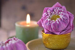 Still life of candle and lotus Royalty Free Stock Image