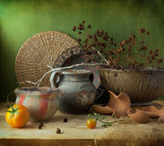 Still life with ceramic flower pots Royalty Free Stock Photo