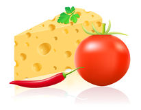 Still life with cheese and vegetables vector illus Royalty Free Stock Photos