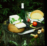 still life with cheese and wine Stock Images