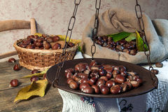 Still life with chestnuts Stock Photography