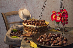 Still life with chestnuts. And balance ancient Royalty Free Stock Photo