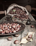 Still life with chestnuts Stock Photos