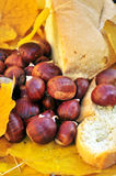 Still life with chestnuts and bread Royalty Free Stock Photos