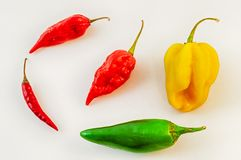 Still life of chilli Stock Photos