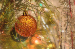 Still life with Christmas ball on pine branch Stock Photo