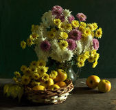 Still life with chrysanthemums and apples Royalty Free Stock Photo