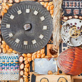 Still life from clockworks and natural objects Stock Image