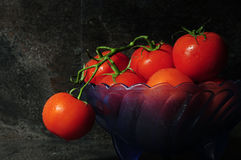 Still life closeup of bright red tomatoes in blue vintage bowl Royalty Free Stock Photos