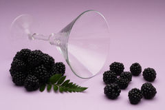 Still life of a cocktail glass and blackberries Royalty Free Stock Photo