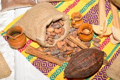 Cocoa pod and beans closeup Royalty Free Stock Images