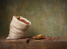 Still life with coffee beans and scoop Royalty Free Stock Images