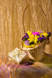 Still life with colorful fresh flowers Royalty Free Stock Photos