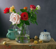 Still life with colorful roses and physalis Stock Photos