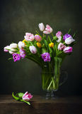 Still life with colorful tulips Royalty Free Stock Images