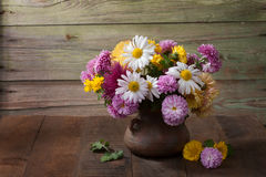 Still life with colourful chrysanthemums bunch Stock Photography