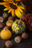 Still life in colours of autumn Stock Photography