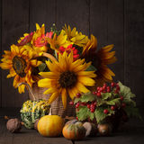 Still life in colours of autumn Stock Image