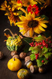 Still life in colours of autumn Royalty Free Stock Photos