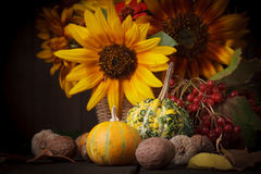 Still life in colours of autumn Stock Photos