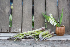 Still life composition with asparagus and ceramic pot with lily-of-the-valley flowers Royalty Free Stock Photo