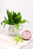 Still life composition with bear's garlic (Allium Ursinum) and onion Stock Image