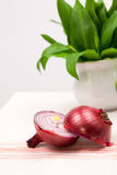Still life composition with bear's garlic (Allium Ursinum) and onion Royalty Free Stock Images
