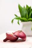 Still life composition with bear's garlic (Allium Ursinum) and sliced onion Stock Photos