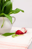 Still life composition with bear's garlic (Allium Ursinum)  and sliced radishes. Still life composition with bear's garlic (Allium Ursinum) leaves and buds and Royalty Free Stock Photos