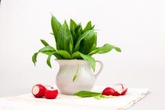 Still life composition with bear's garlic (Allium Ursinum)  and sliced radishes Royalty Free Stock Photo