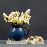 Still life composition with chestnut buds, flowers and small leaves in a blue ceramic pot and walnuts Royalty Free Stock Image