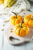 Still life composition with colorful decorative mini pumpkins and pumpkin seeds. Mini orange pumpkins, holiday decoration