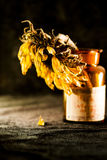 Still life composition with dried sun flower Royalty Free Stock Photo