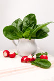 Still life composition with fresh spinach and radishes Royalty Free Stock Photos