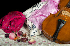 Still life composition with violin. Still life composition with cremonese violin Royalty Free Stock Photography